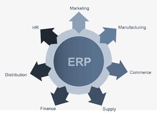 erp graph